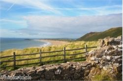 Wildlife and history highlighted in Orkney trek