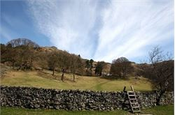 Central Lakeland guided walk to be staged