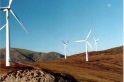 Charity attacks windfarm move