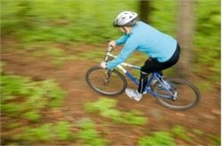Grizedale Forest mountain bike trail open