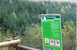 Tree planters head for Lake District forest