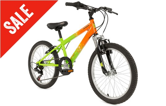 a3056c94868 Raleigh Viper Kids  Mountain Bike