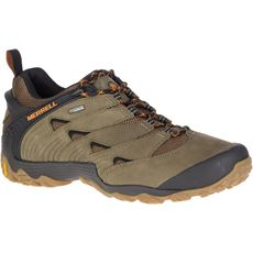 Men's Chameleon 7 GTX® Shoes
