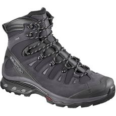 Quest 4D 3 GTX Men's Hiking Boot