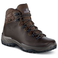 Men's Terra GTX Walking Boots