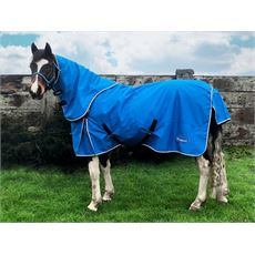 Ardsey Combo 200g Turnout Rug
